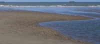 Global clean water problems solved in dry but sunny offshore areas via algae production