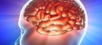 Brain Capacity Testing